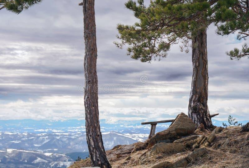 Vue de point de montagne avec le banc et le pin sur la grande vallée photos stock
