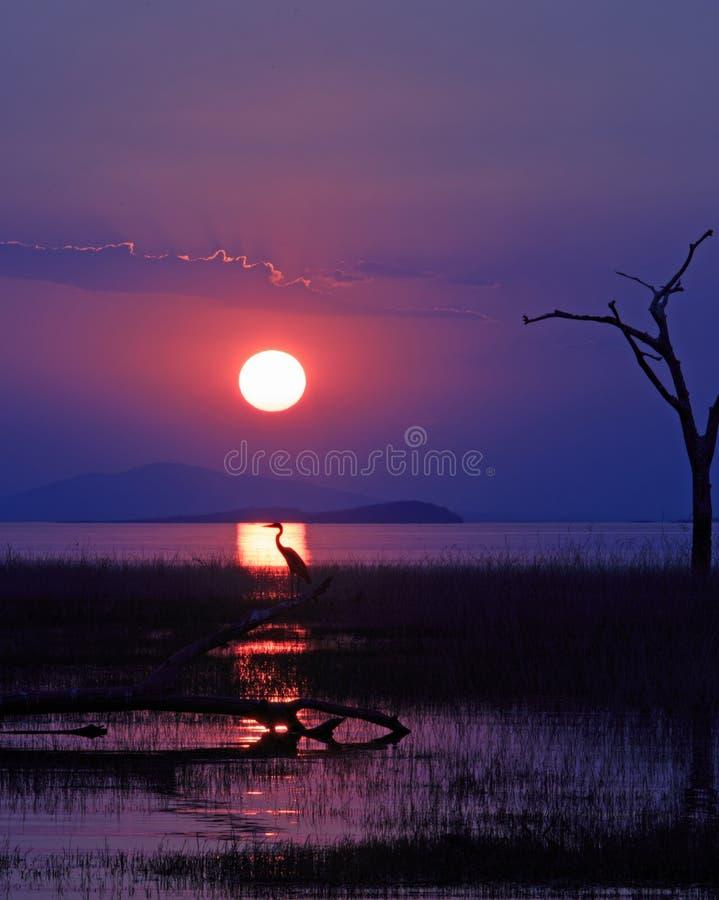 Vue de portrait d'un beau coucher du soleil au-dessus du Lac Kariba photographie stock libre de droits
