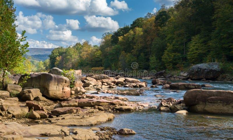Vue de rapide de rivière de fraude près d'Albright image libre de droits