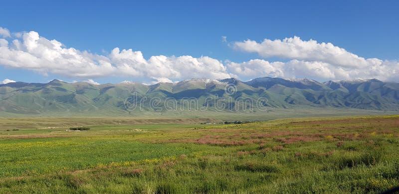 Vue de ressort sur des montagnes de Tian-Shan image libre de droits