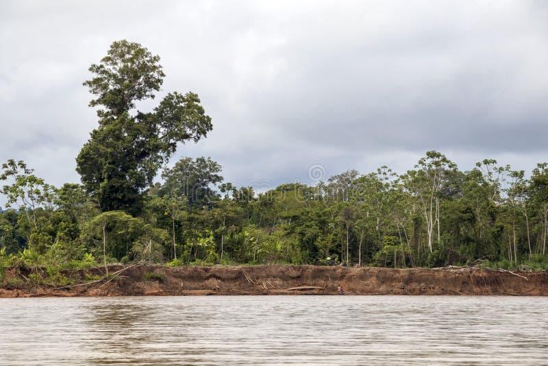 Vue de rivière de Beni et de forêt tropicale de parc national de Madidi dans le bassin supérieur du fleuve Amazone en Bolivie, Am photo stock