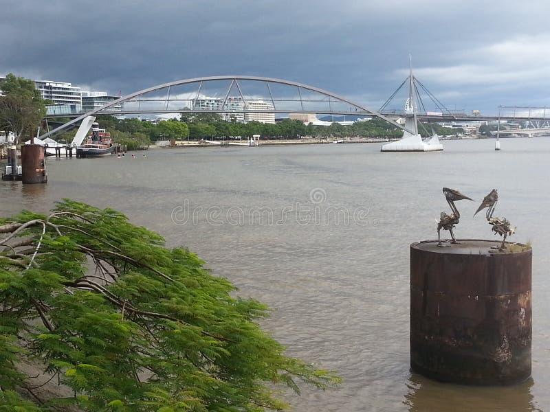 Vue de rivière de Brisbane photo stock