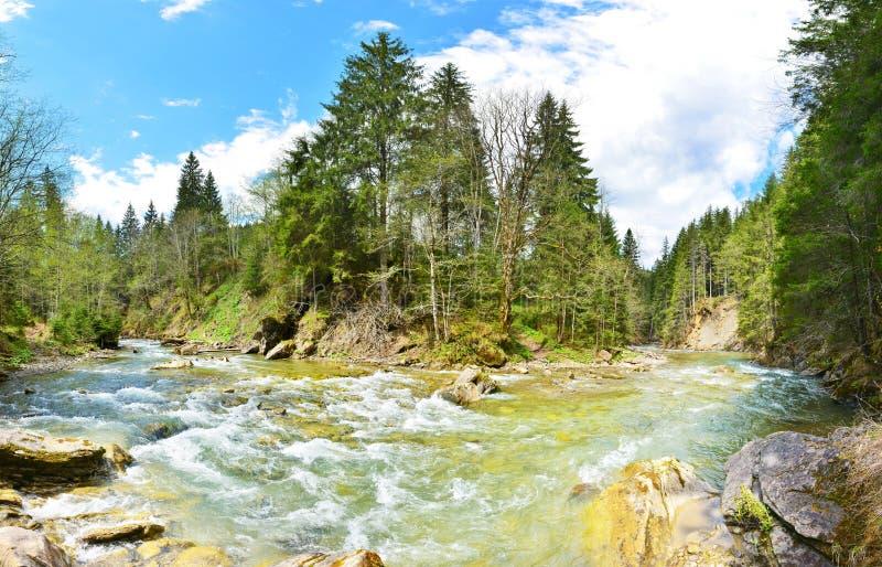 Vue de rivière de montagne en ressort ensoleillé photo stock