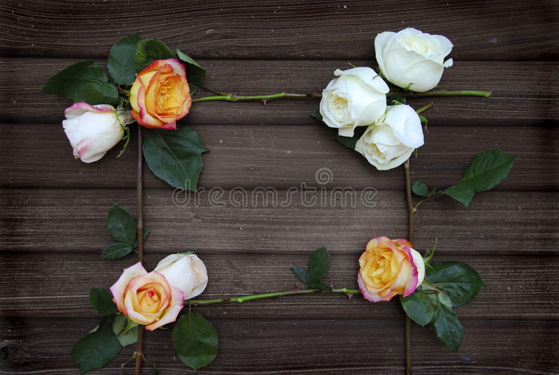 vue de rose sur le vieux bois de grange photo stock image du charmer grunge 8028728. Black Bedroom Furniture Sets. Home Design Ideas