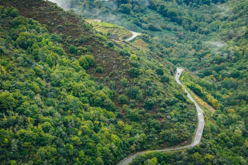 Vue de route goudronnée, de forêt et de vignobles le long de rivière Sil images libres de droits