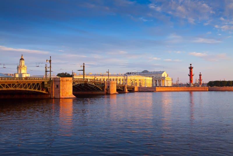 vue de saint de Pétersbourg Passerelle de palais photos libres de droits