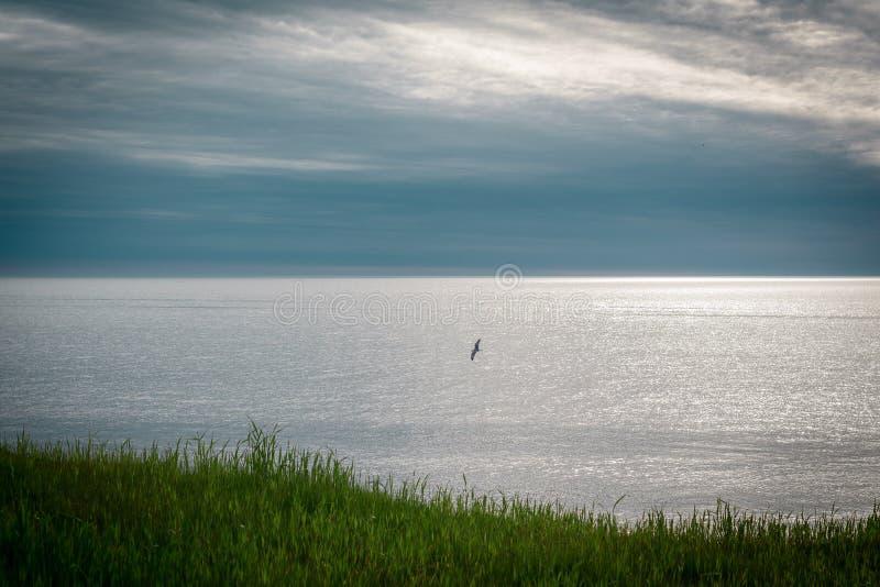 Vue de Shoreline du lac Érié images stock