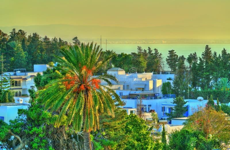 Vue de Sidi Bou Said, une ville près de Tunis, Tunisie images stock