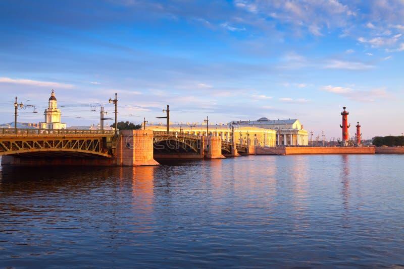 Vue de St Petersburg. Broche d'île de Vasilievsky image libre de droits