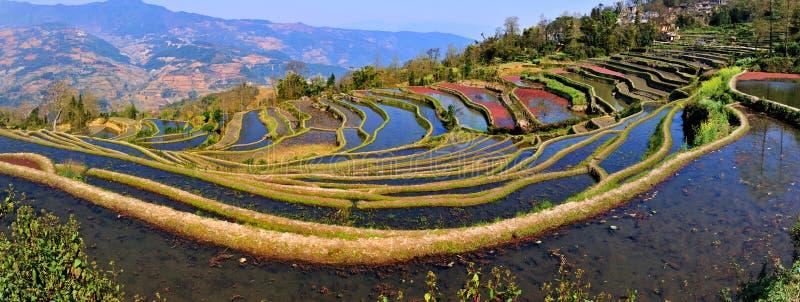 Vue de terrasse de la Chine Yunnan Hani image stock