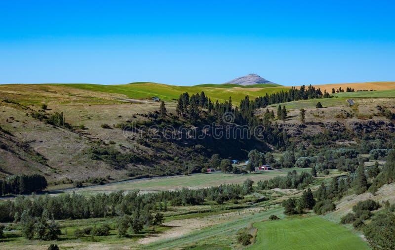 Vue de vallée avec la butte de Steptoe dans la distance photo stock