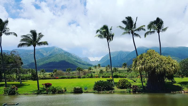 Vue de vallée de Waikapu photo stock