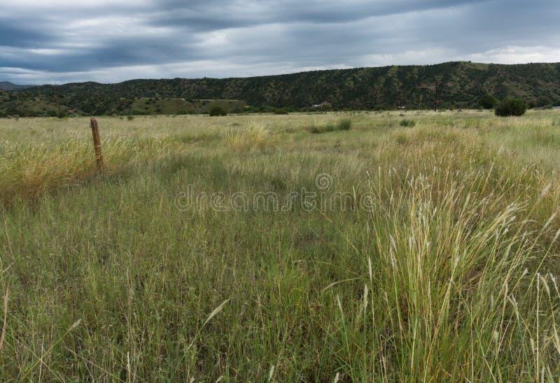 Vue de vallée de Mimbres au Nouveau Mexique photo stock