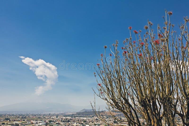 Vue de volcan de Popocatepetl de Cholula, Mexique photos libres de droits