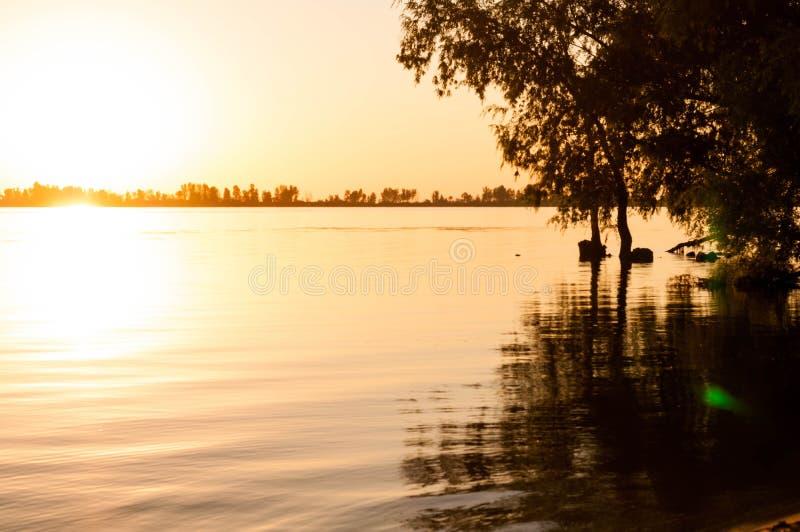 Vue des arbres au-dessus de la rivière calme au lever de soleil image libre de droits