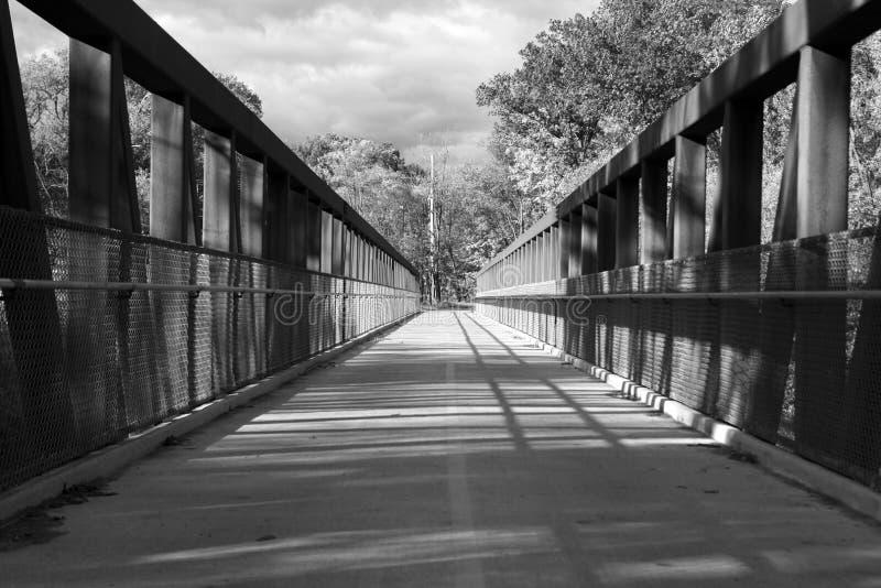 Vue des arbres par le pont en acier Chicago, gamme de gris images stock