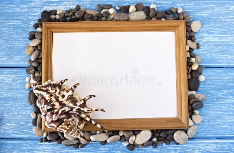 Vue des cailloux et des coquilles sur un fond en bois bleu photo libre de droits