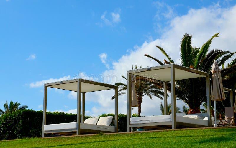 Vue des chaises longues et des palmiers de quelques lits sur une herbe verte dans un club de plage de Ténérife, Îles Canaries, Es photographie stock libre de droits