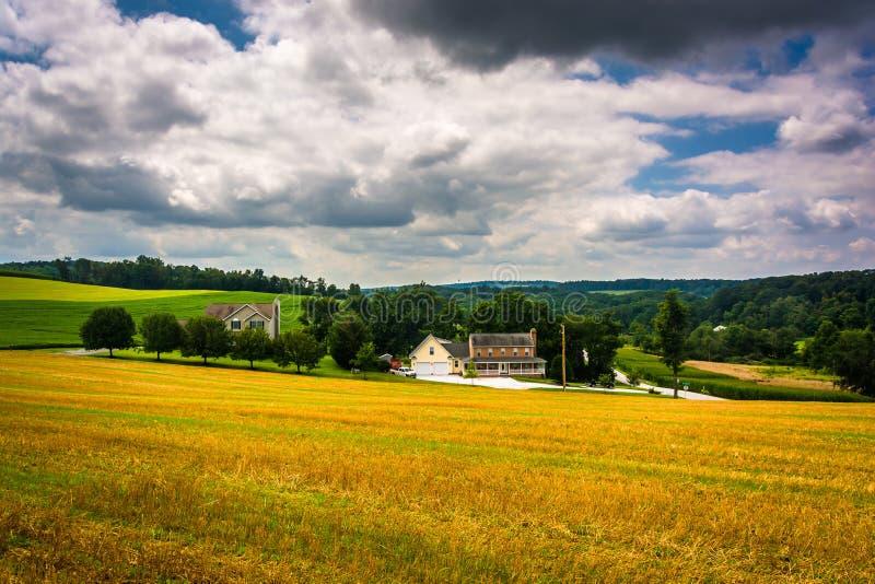 Vue des champs de ferme et de la Rolling Hills dans Carroll County rurale, M photo stock