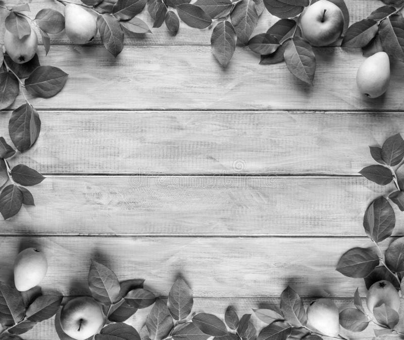 Vue des feuilles vertes, pommes et poires sur les panneaux en bois de cru Place pour le texte photographie stock