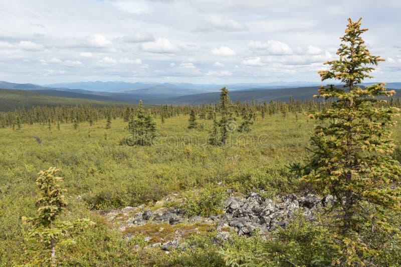 Download Vue des montagnes blanches photo stock. Image du vaste - 76076350