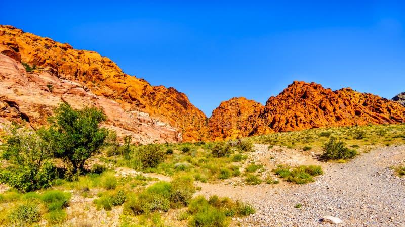 Vue des montagnes de grès rouge d'Ash Canyon Trail en canyon rouge de roche photo stock