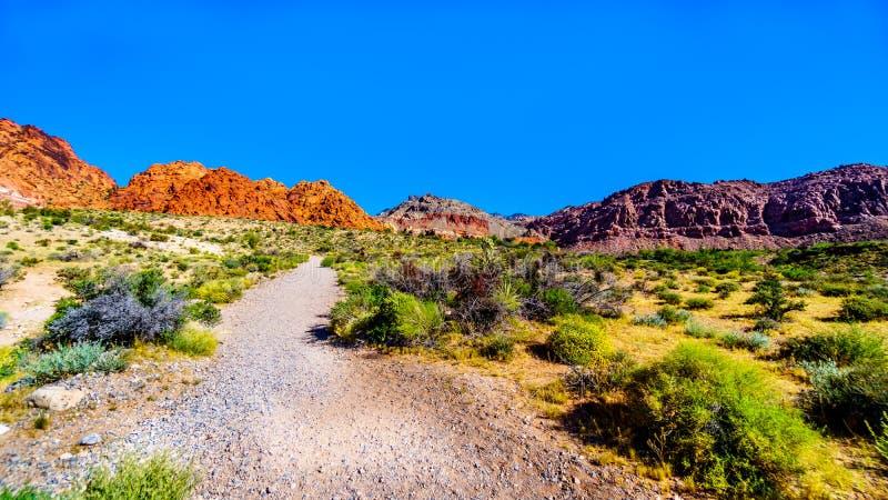 Vue des montagnes de grès rouge d'Ash Canyon Trail en canyon rouge de roche photos libres de droits