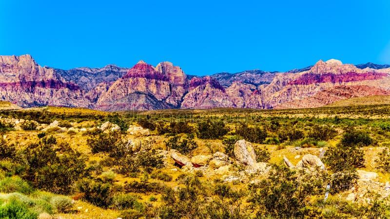 Vue des montagnes de grès rouge dans la région nationale de conservation de canyon rouge de roche image stock
