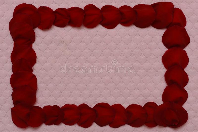 Vue des pétales roses rouges image stock