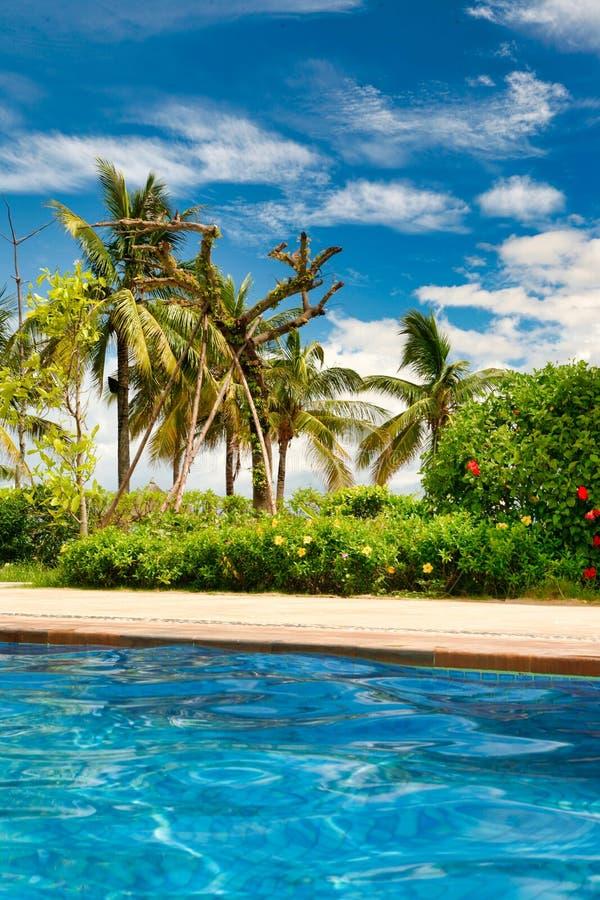 Vue des palmiers et du ciel bleu de la piscine clair comme de l'eau de roche Hainan photos libres de droits
