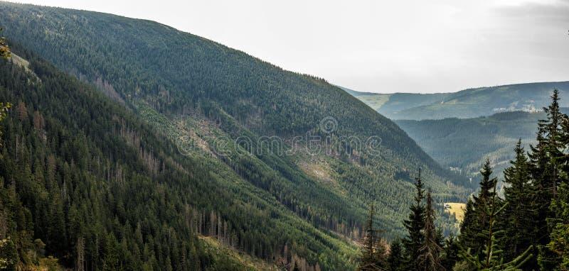Vue des pentes et des collines vertes Paysage de montagne un jour d'été Été dans les montagnes Beau panorama pour une carte posta image stock