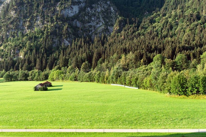 Vue des prés alpins bien-toilettés avec des annexes contre le contexte des montagnes photos libres de droits