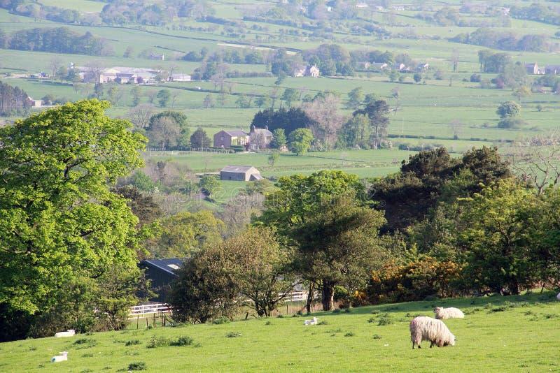 Vue des terres cultivables de Lancashire photos stock
