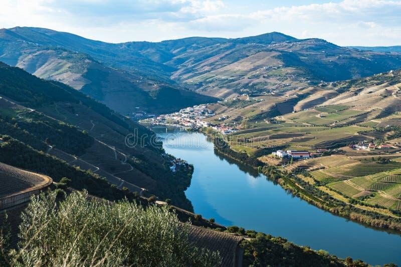 Vue des vignobles en terrasse dans la vallée de Douro images stock