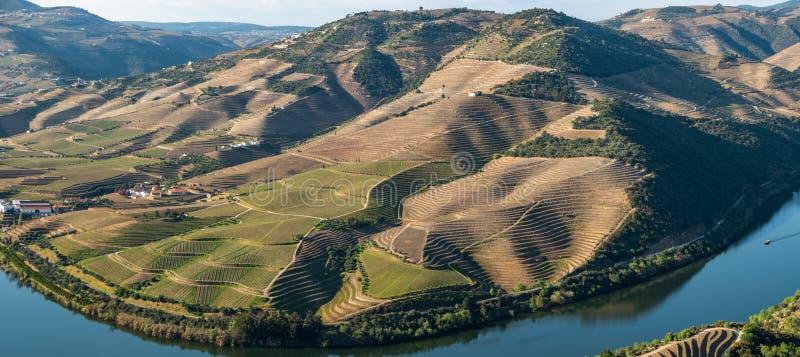 Vue des vignobles en terrasse en vall?e et rivi?re de Douro pr?s du village de Pinhao, Portugal Concept pour le voyage au Portuga photos libres de droits