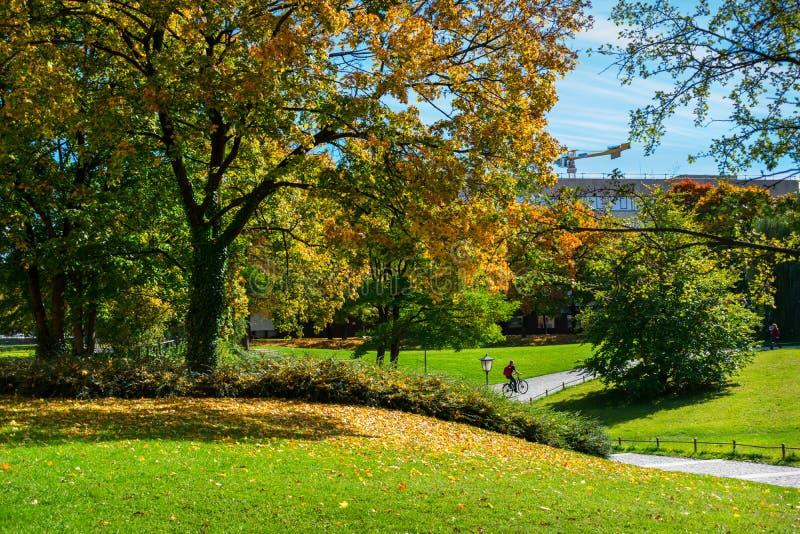 Vue des voies et des cyclistes dans le jardin anglais à Munich, Allemagne photographie stock libre de droits