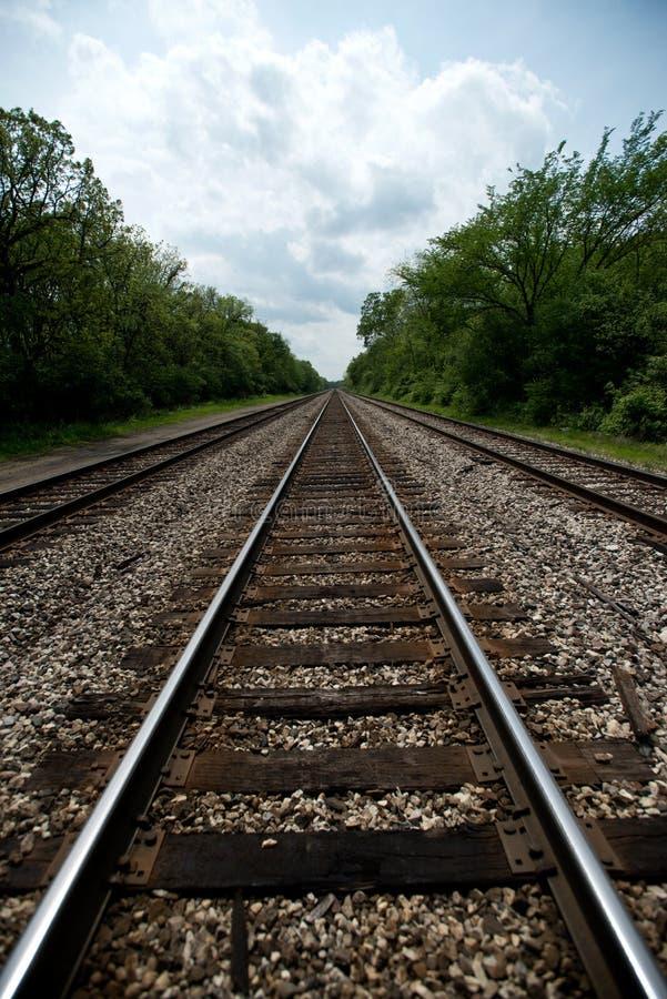 Vue des voies ferrées avec des arbres photo stock