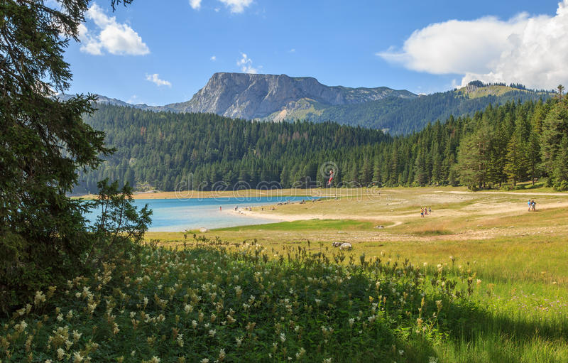 Vue du jezero noir de Crno de lac en parc national de Durmitor, Monténégro image stock