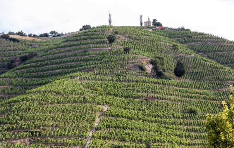 Vue du M Vignobles de Crozes-ermitage de Chapoutier dans Tain l ermitage de `, vallée du Rhône, images libres de droits