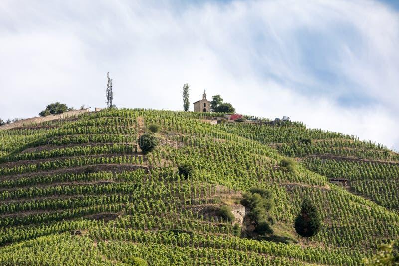 Vue du M Vignobles de Crozes-ermitage de Chapoutier dans Tain l ermitage de `, vallée du Rhône image stock