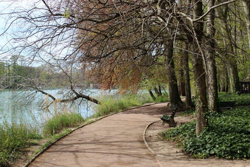 Vue du parc de Lyon photographie stock libre de droits