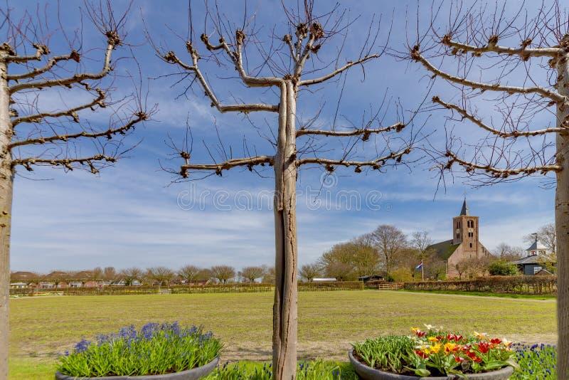 Vue du paysage néerlandais de village, avec le pré vert, les fleurs, l'air bleu de ressort, les saules d'arbre étêté, et une égli photographie stock