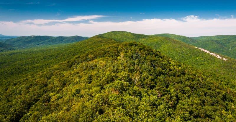 Vue du Ridge et des Appalaches de vallée de grand Schloss, la Virginie Occidentale photographie stock libre de droits