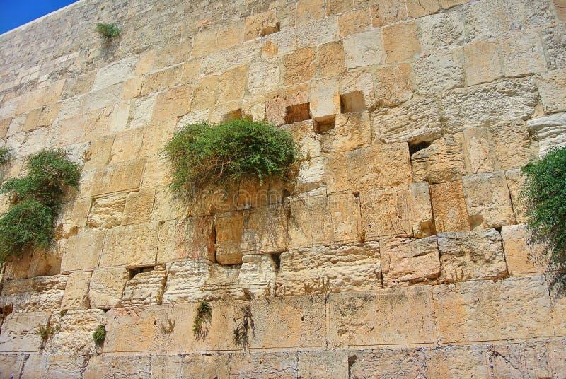 Vue du temple du mur occidental de Jérusalem Mur des larmes l'israel photo libre de droits