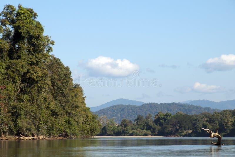 Vue en amont de bateau dans la saison sèche photos libres de droits