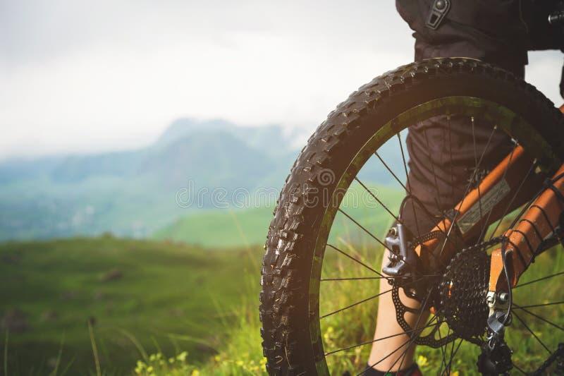 Vue en gros plan de cassette de roue arrière de vélo de montagne sur le paysage et l'herbe verte photo libre de droits