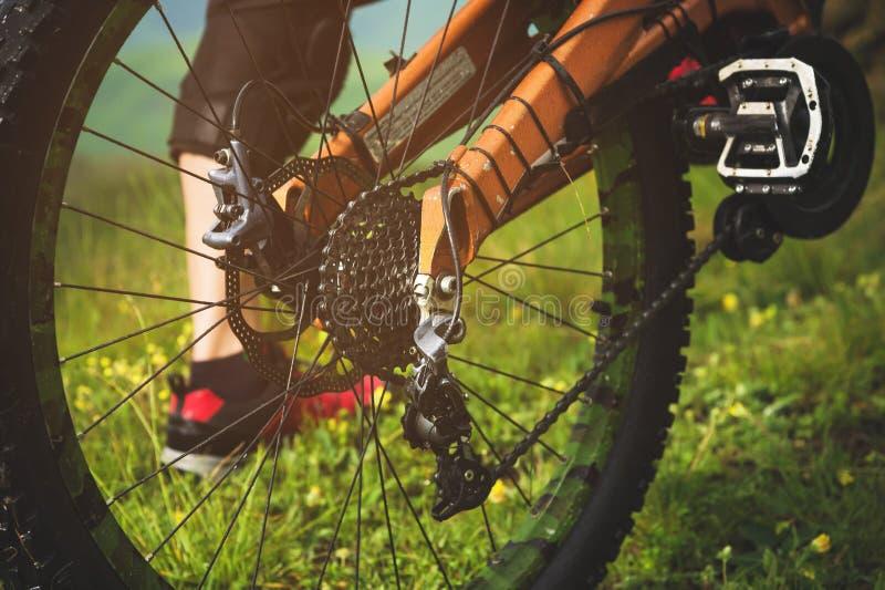 Vue en gros plan de cassette de roue arrière de vélo de montagne sur le paysage et l'herbe verte image stock