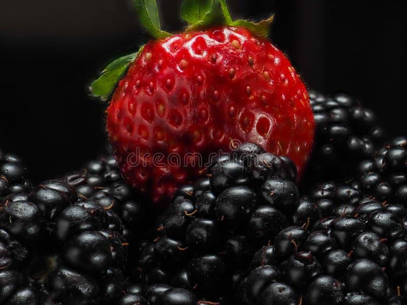Vue en gros plan des baies mélangées et assorties mûre, fraise, fond Concept coloré et sain photo stock