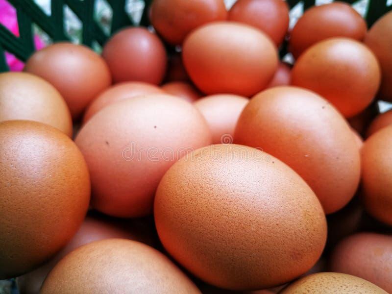 Vue en gros plan des oeufs crus de poulet images libres de droits