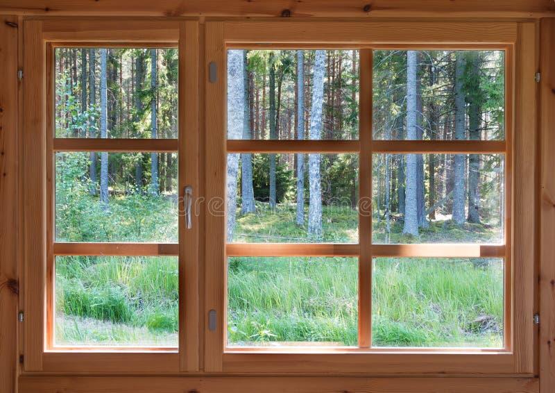 Vue ensoleillée verte des bois d'été dans la fenêtre en bois de pays photo libre de droits